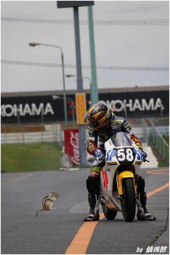 Dバイク.JPG