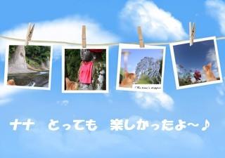 happy memories3.jpg