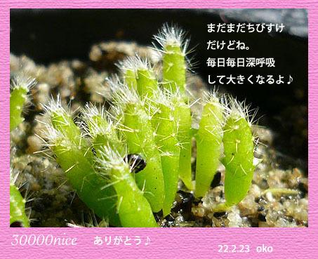100224-10[1].jpg