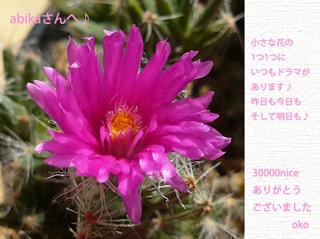 100224-11-ffb69[1].jpg