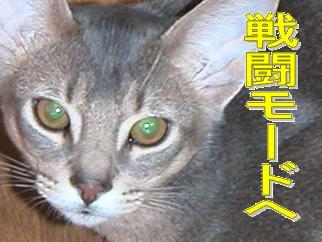 a戦闘モード.JPG