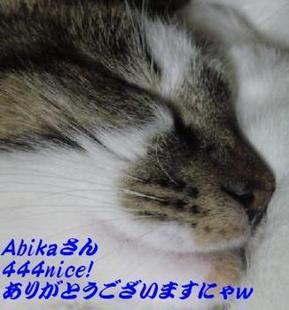 m_444nice![1].jpg